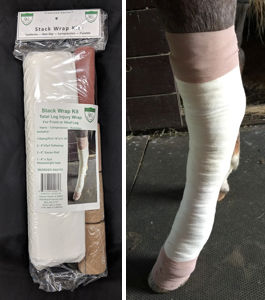 Stack Wrap and photo of horse leg